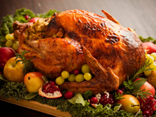 Christmas Turkey with Cranberry sauce