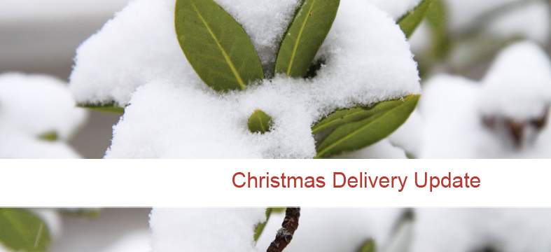 christmas_delivery