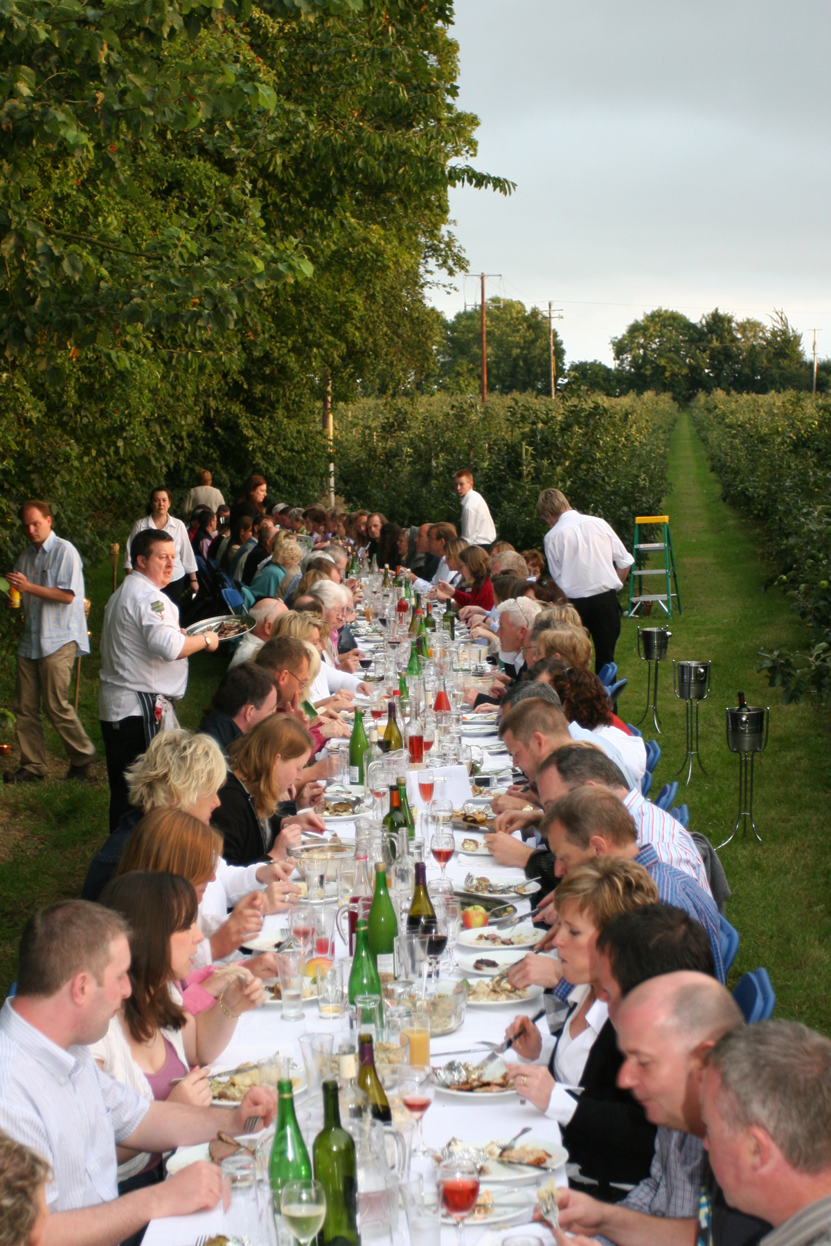 Previous Long Table Dinner at the Apple Farm